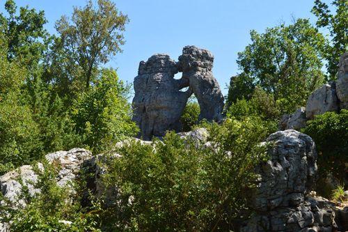 Bois de Païolive en Ardèche